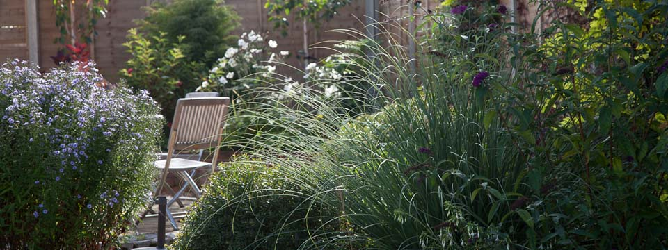 Norfolk Garden Design